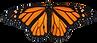 monarch2.png