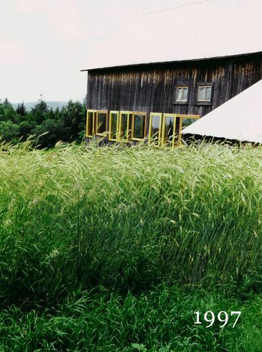 1997Barn-Grass.jpg