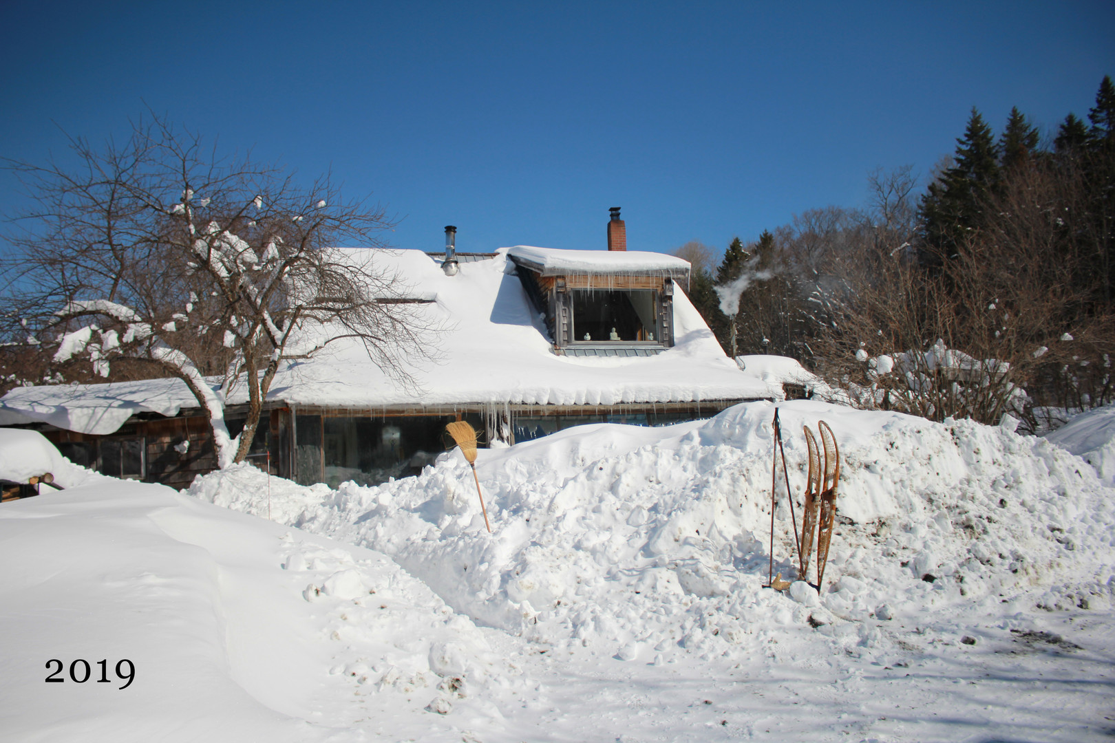2019wintermainhouse.jpg
