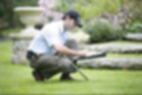 lawn analysis.jpg
