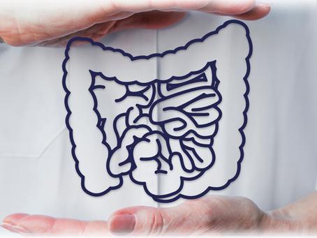 E-book: conhecendo a microbiota intestinal
