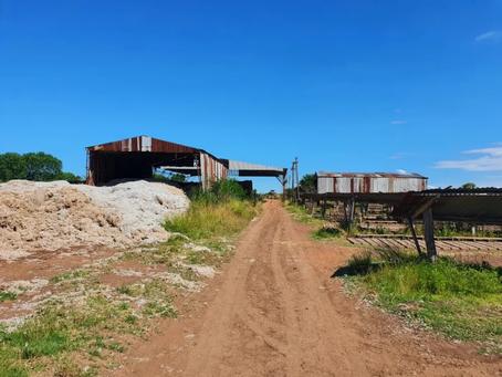 Horror en Cañuelas | Mató a su compañero de un golpe y lo enterró en un horno de ladrillos