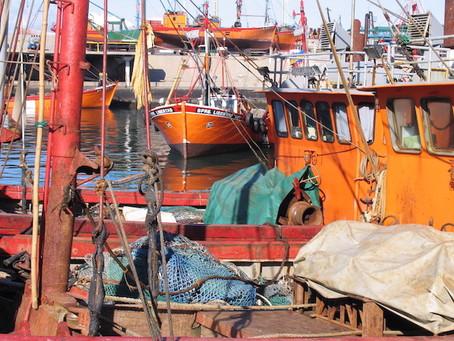 Lanzan programa de promoción de la actividad pesquera