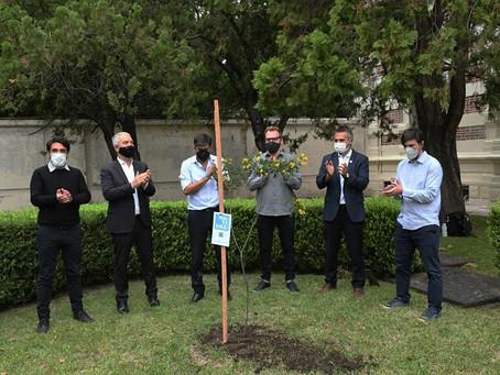 """La provincia de Buenos Aires entregó mil ejemplares nativos para campaña """"Plantamos Memoria"""""""