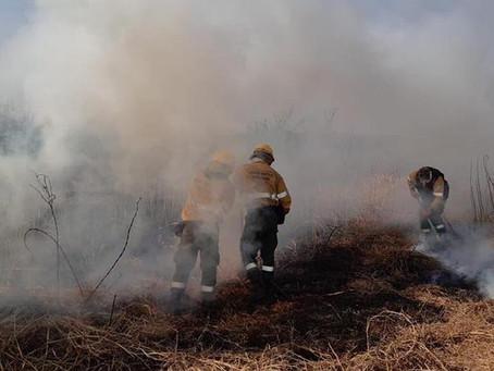 Declaran la emergencia ambiental en la zona del Delta del Río Paraná de la provincia de Buenos Aires