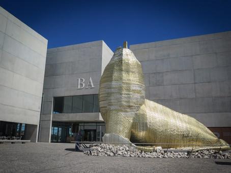Mar del Plata | El Museo de Arte Contemporáneo MAR reabrirá sus puertas este viernes