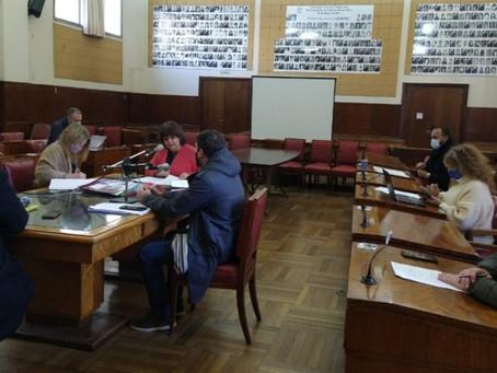 Mar del Plata | El Concejo Deliberante lanzó un sistema de participación ciudadana