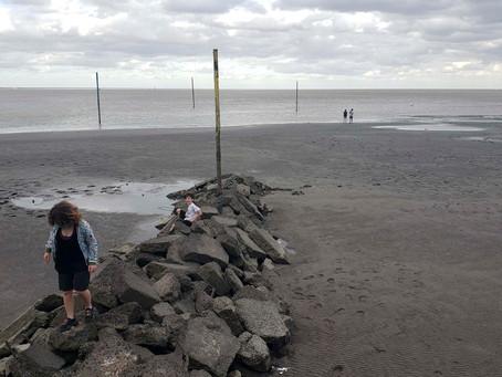 Temporal de viento causó destrozos y daños en el conurbano y el interior bonaerense