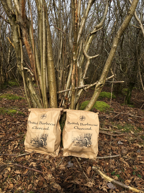Coppiced hazel for charcoal