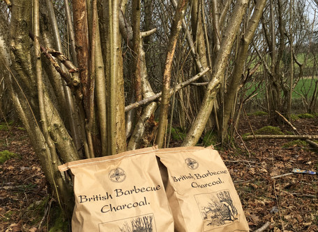 A new partnership with the Woodland Trust