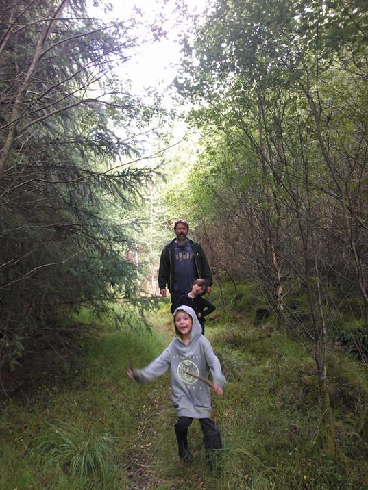 Woodland explorers