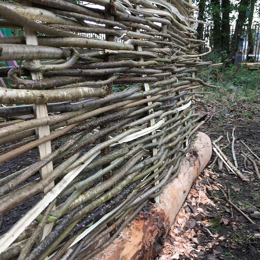 National Beanpole Week coppice event