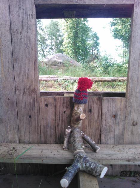 Hazel in the woods