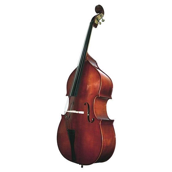 solo double bass.jpg