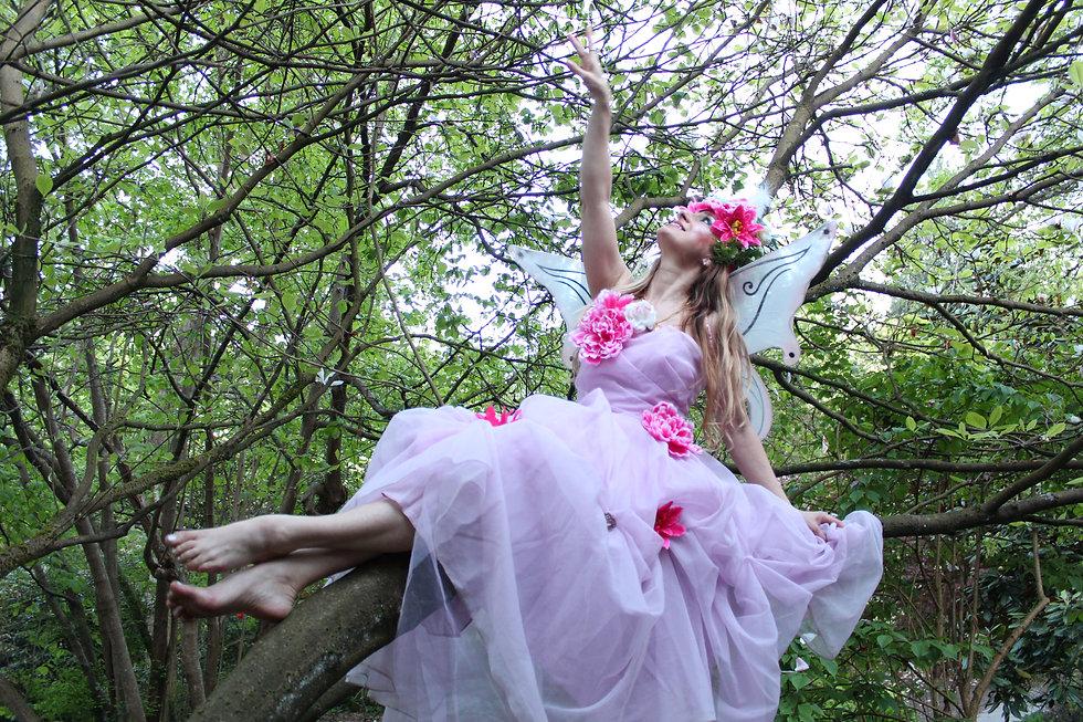 1_Fairy_fée_Nathalie_connecte_avec_oiseaux_et_papillons_sur_l'arbre.JPG
