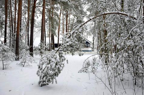 Jürgen_Winter 2