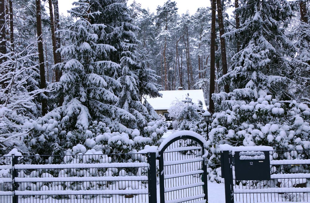 Dieter_Winter 1