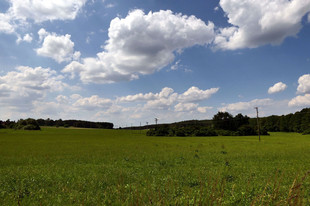 Dieter_Reeut Landschaft.jpg