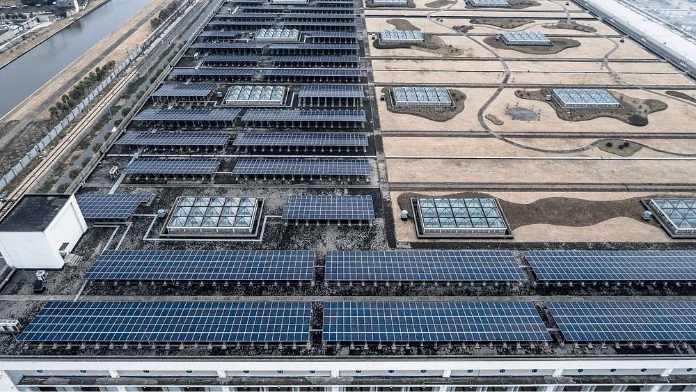 Paneles solares para empresas en México - Enersing