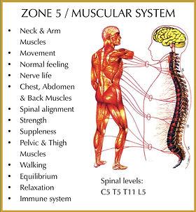 Zone-5.jpg