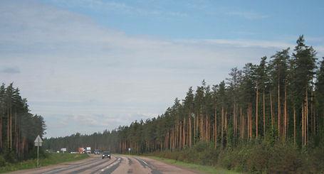 Vyborg highway 08 June 3 2010.jpg