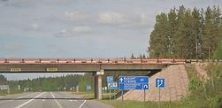 Vyborg highway 10 40km June 3 2010.jpg