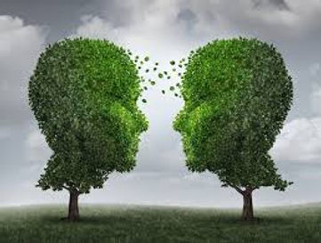 2 arbres.jpeg