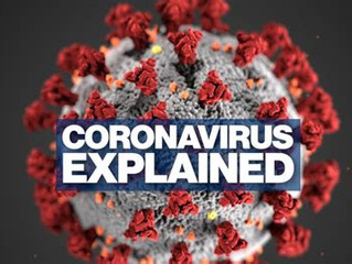 So What is this Covid-19/ Corona Virus Really?