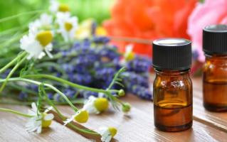 The Essential Oil Doctor