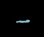 Logo La Remember copy.png