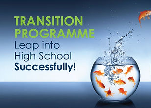 OLD Transition-Programme_edited.jpg