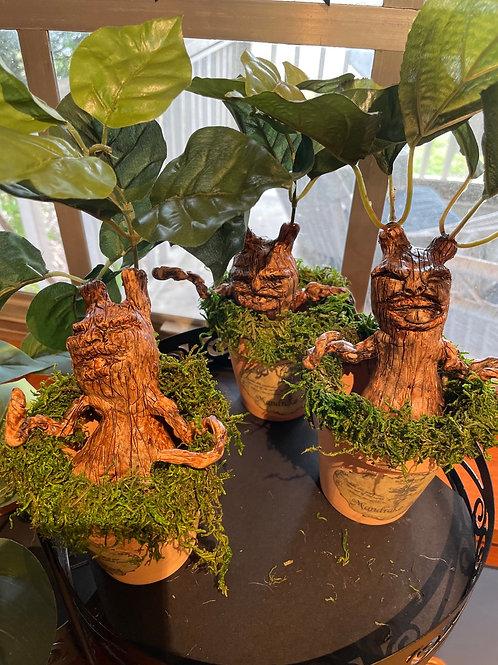 Mandrake Sapling Sculpture