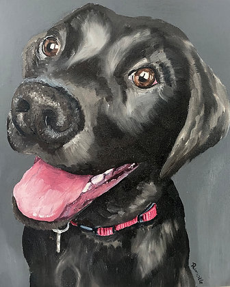 Custom Oil Pet Portrait