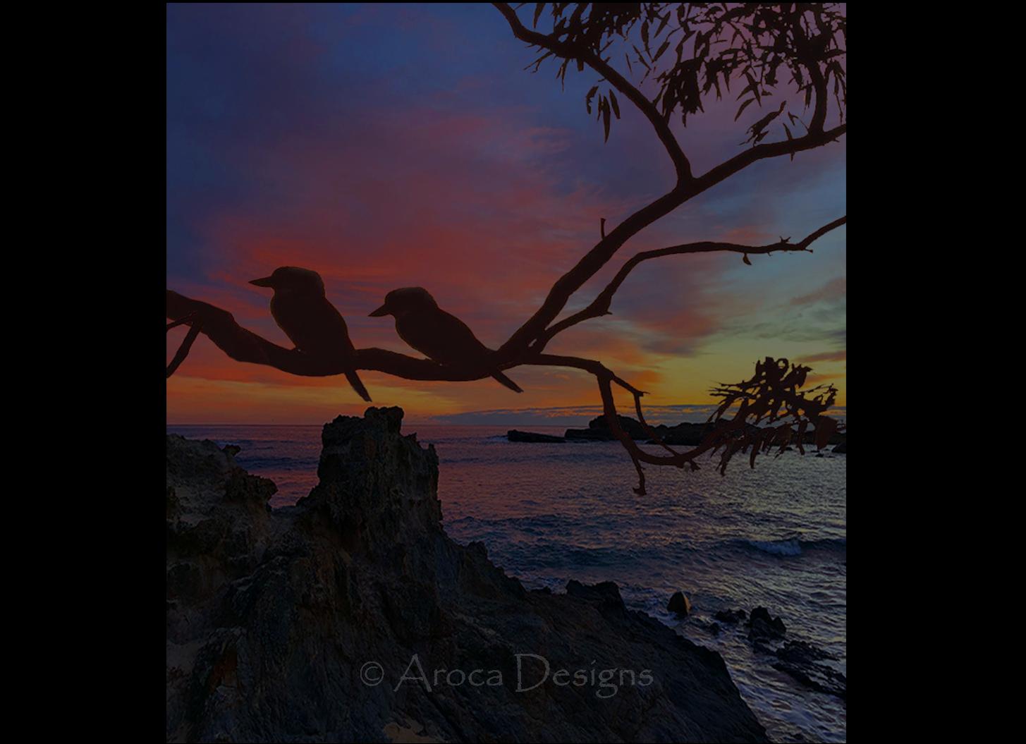 kookaburras at Mystery Bay