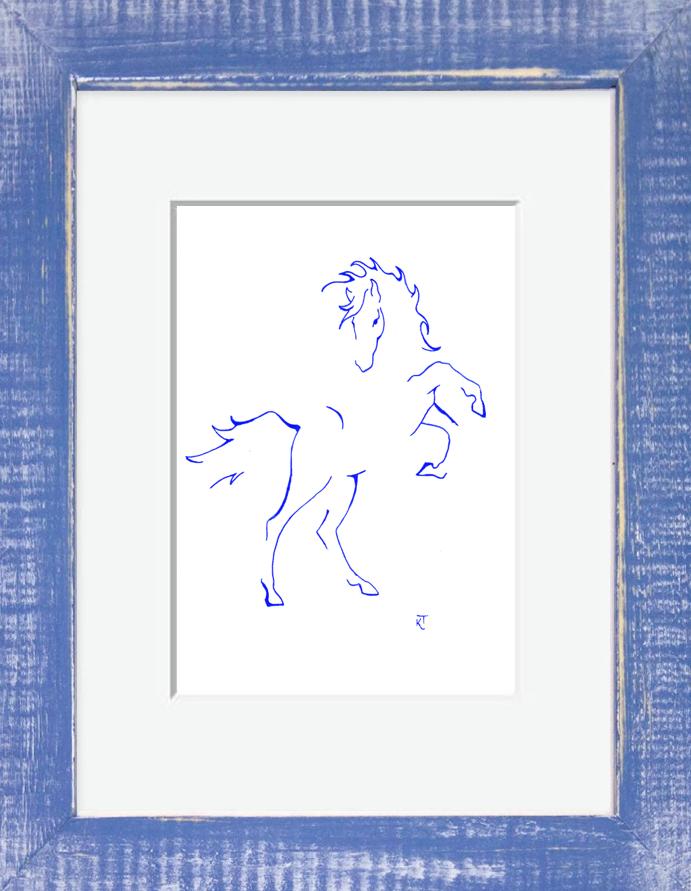 Kelly the Wild Horse