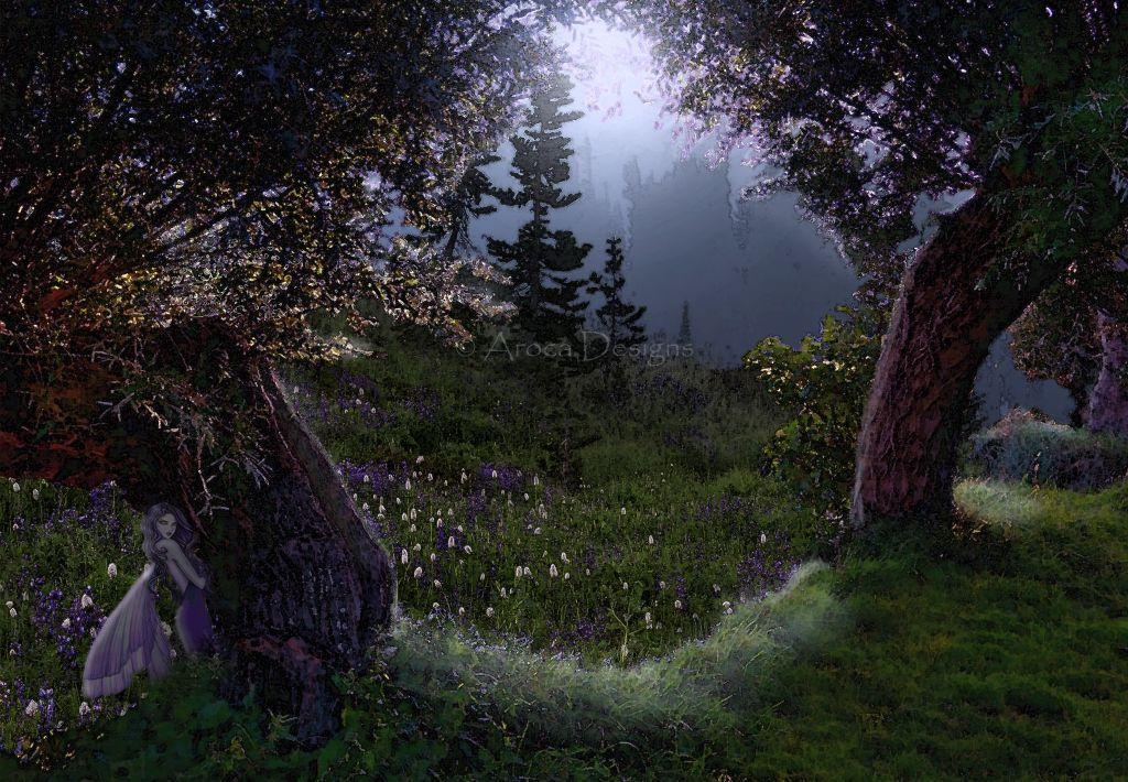 Midnight Fairy Meadow