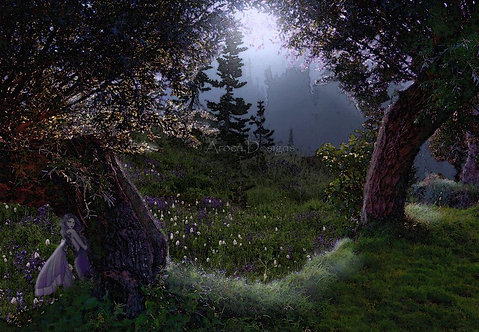 Midnight Fairy Meadow