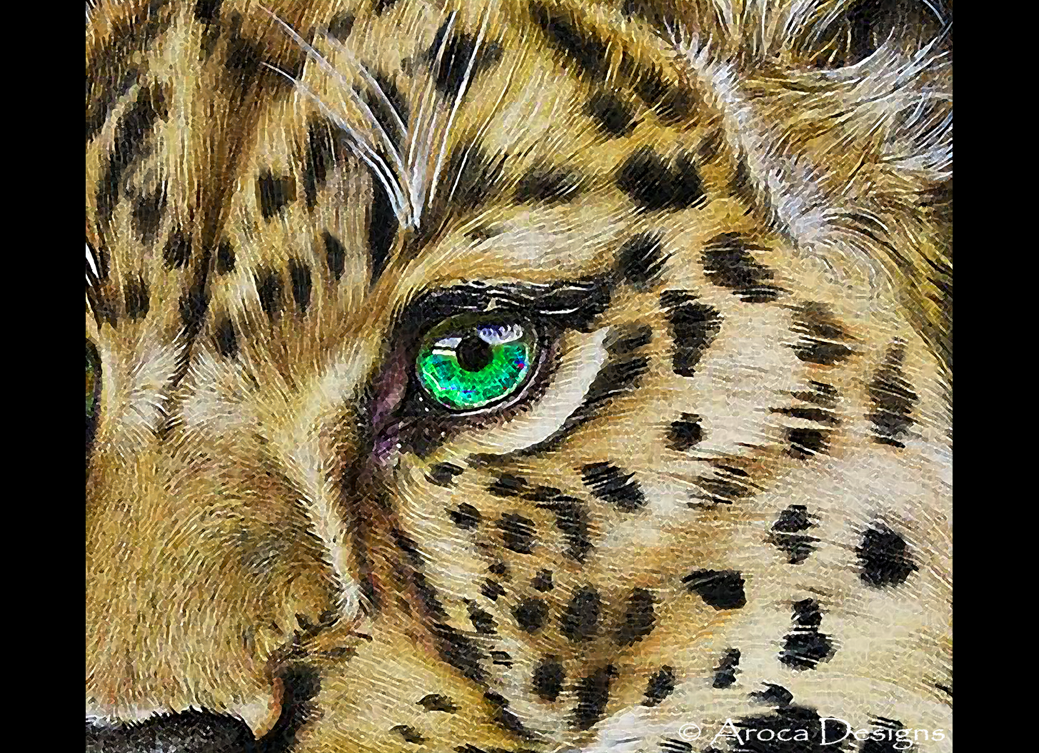 eye of the cheetah