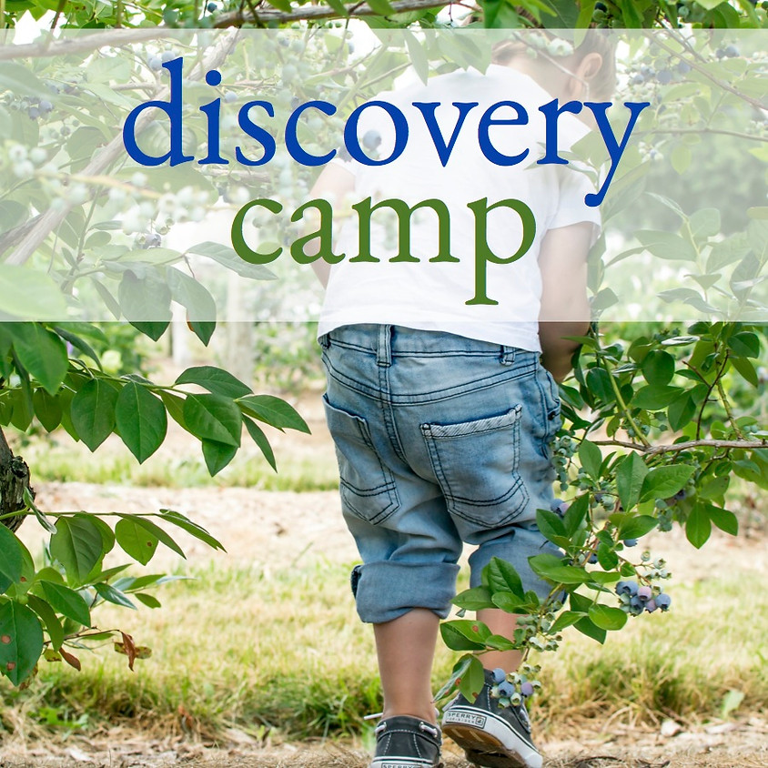 Discovery Farm Camp - Afternoon Session 1