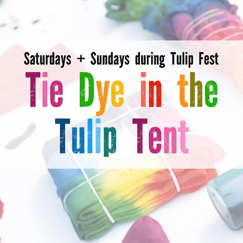 Tie Dye in the Tulip Tent - 5/2