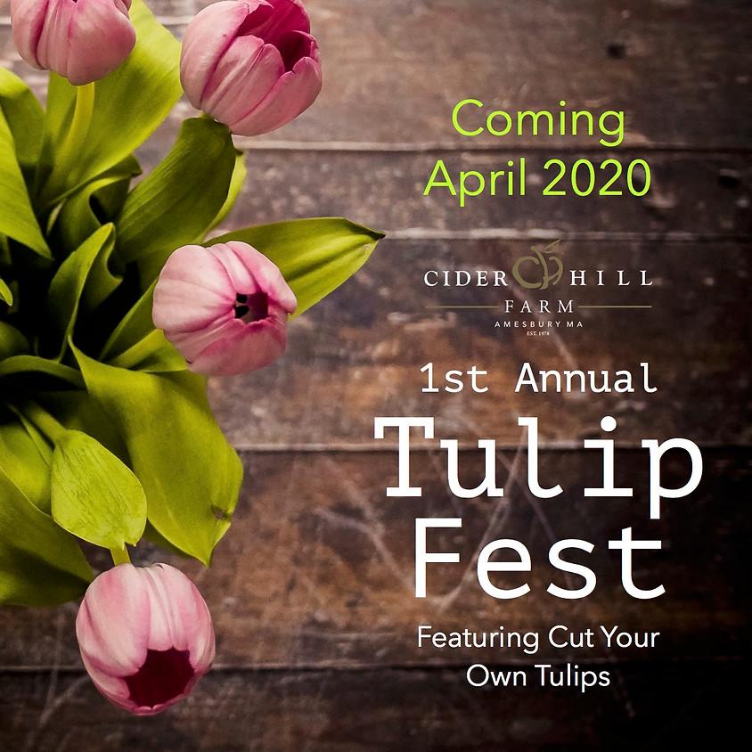 Pre-Sale Tickets! Tulip Fest