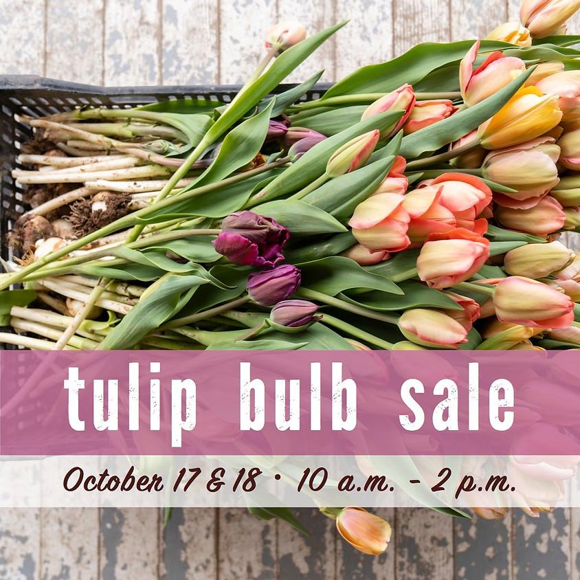 Tulip Bulb Sale!