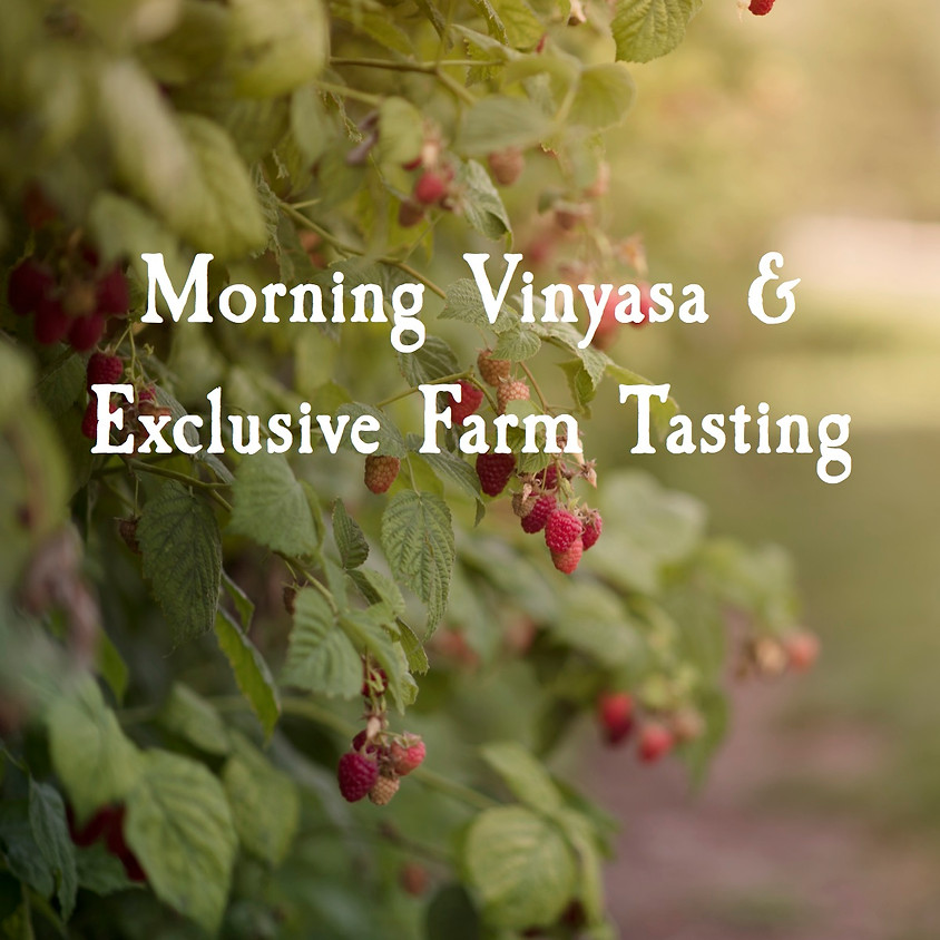 Morning Vinyasa & Exclusive Farm Tasting