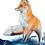 Thumbnail: Canadian Fox Original