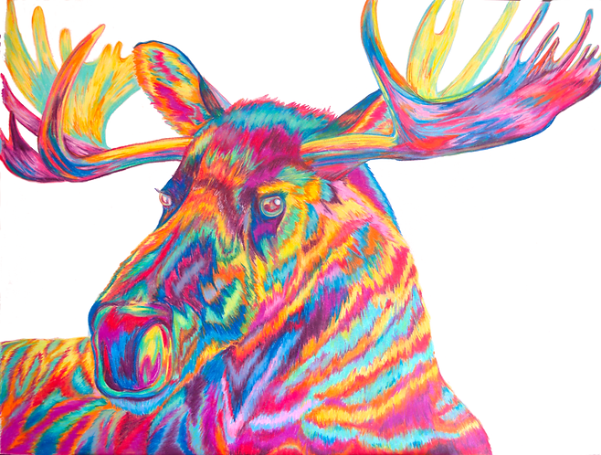 Original Moose in Prismacolor