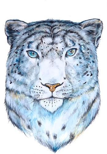 Print of Watercolor Snow Leopard