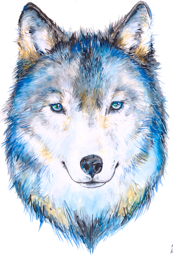 Print of Watercolor Wolf