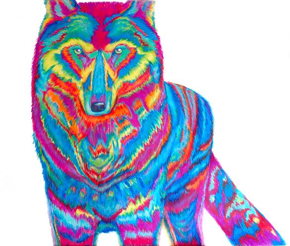 Original Wolf in Prismacolor