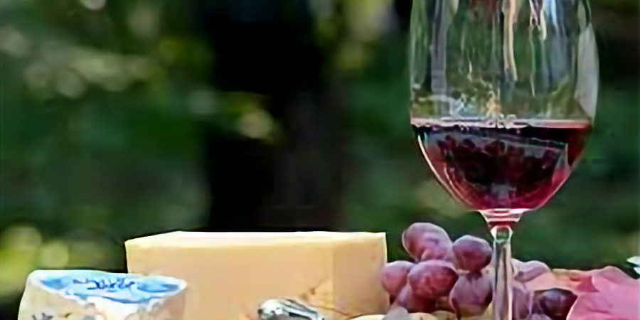 Wine and Food Harmony