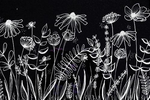 Wild Flower Doodles